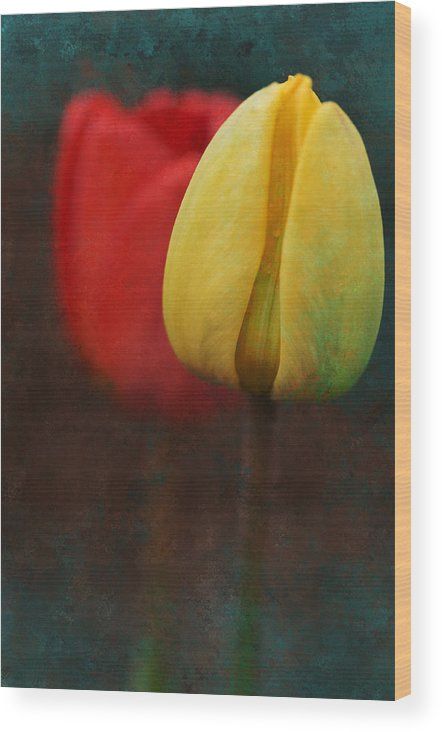 Tulips Wood Print featuring the photograph Too Tulips by Peter Olsen