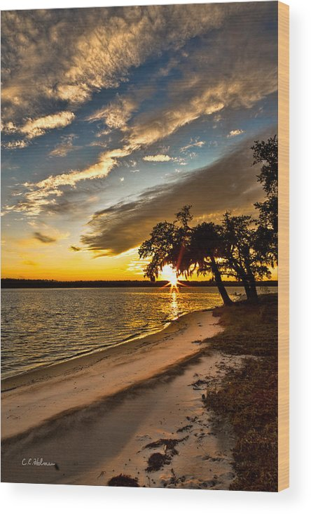 Sunset Wood Print featuring the photograph Trapped Sunset by Christopher Holmes