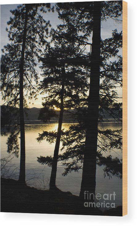 Trees Wood Print featuring the photograph Trees By The Lake by Idaho Scenic Images Linda Lantzy