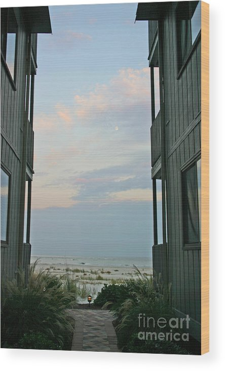 Blue Light Wood Print featuring the photograph Twilight by Beebe Barksdale-Bruner