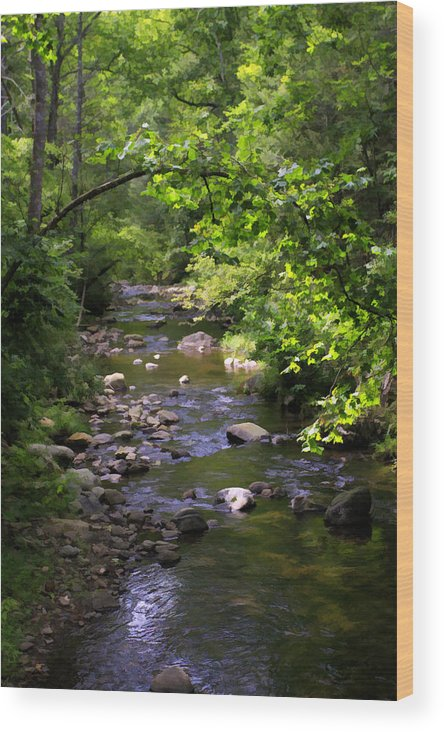 Paining Wood Print featuring the photograph Up A Creek by Rebecca Raybon
