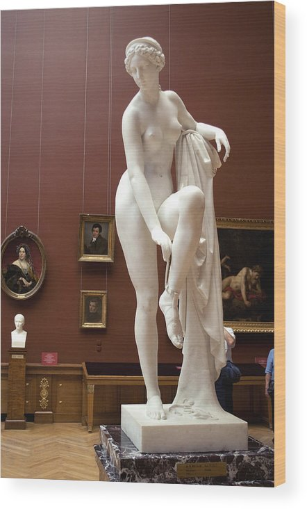 Venus Wood Print featuring the photograph Venusstatue C295 by Charles Ridgway