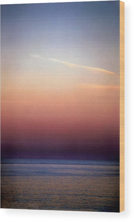 Landscape Wood Print featuring the photograph Vertical Number 1 by Sandra Gottlieb