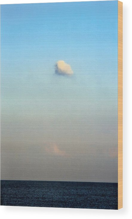 Landscape Wood Print featuring the photograph Vertical Number 16 by Sandra Gottlieb