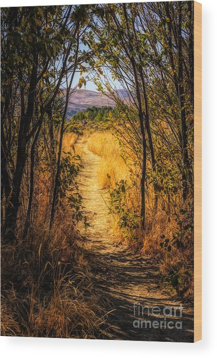 Fall Wood Print featuring the photograph Walk With Me by Wendy Elliott