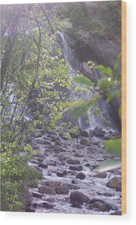 Landscape Wood Print featuring the photograph Waterfall Beauty by Sarah Bauer