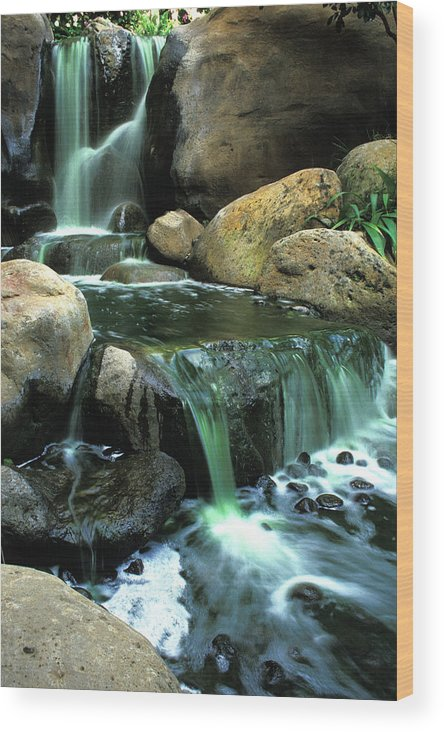 Water Wood Print featuring the photograph Waterfall On Maui by Carl Purcell