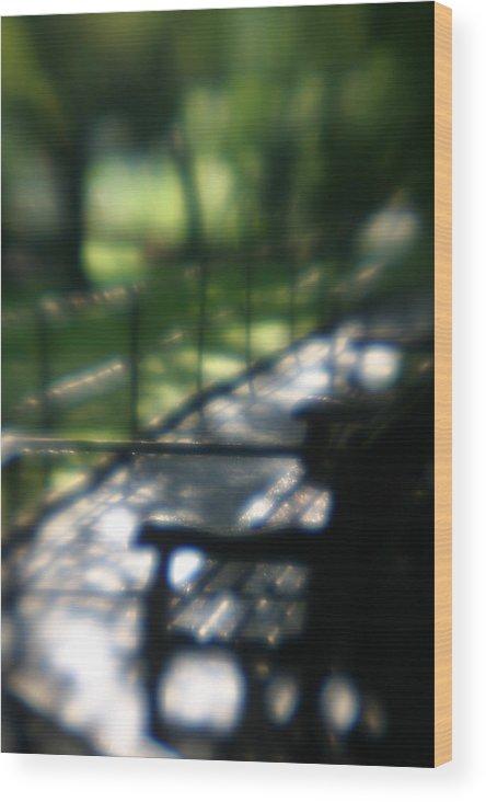 Bench In Monet's Garden Wood Print featuring the photograph Welcome To Monets Garden by Jennifer McDuffie