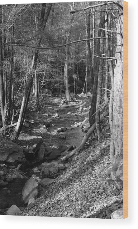 Nature Wood Print featuring the photograph Wesser Creek Trail by Kathy Schumann