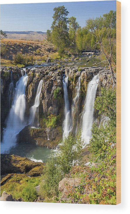 White River Wood Print featuring the photograph White River Falls In Tygh Valley by David Gn