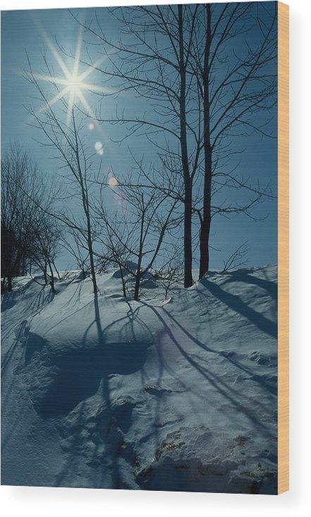 Winter Wood Print featuring the photograph Winter Glow by Raju Alagawadi