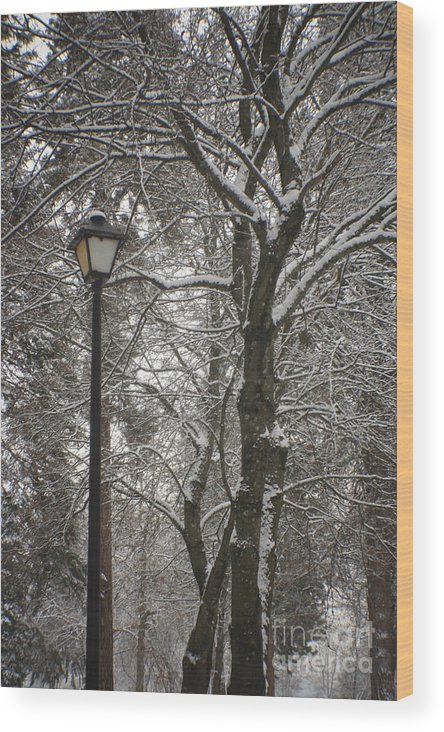 Lamp Wood Print featuring the photograph Winter Lamp Post by Idaho Scenic Images Linda Lantzy