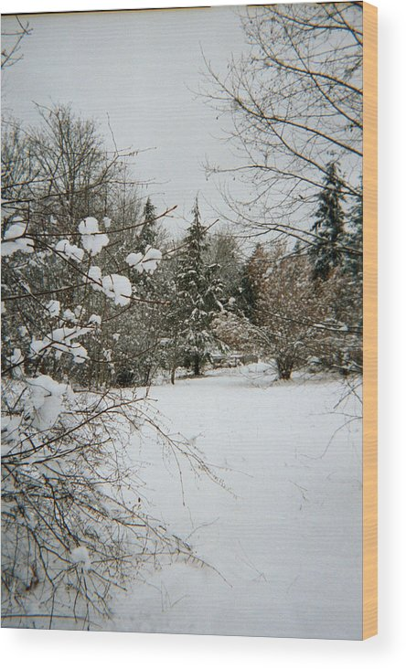 Snow Wood Print featuring the photograph Winter Silence by Valerie Josi