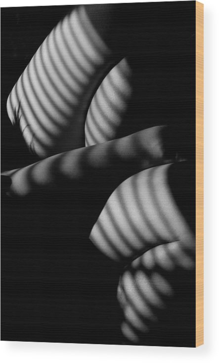 Black And White Wood Print featuring the photograph wm by Catherine Lau