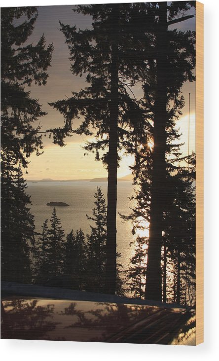 Silhouette Wood Print featuring the photograph Yellow Sun's Silhouette by Michael Lee