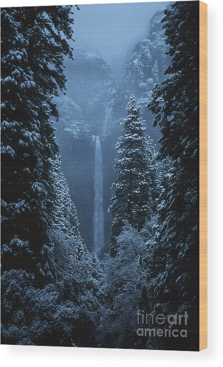 California Wood Print featuring the photograph Yosemite Falls In January by Stan and Anne Foster
