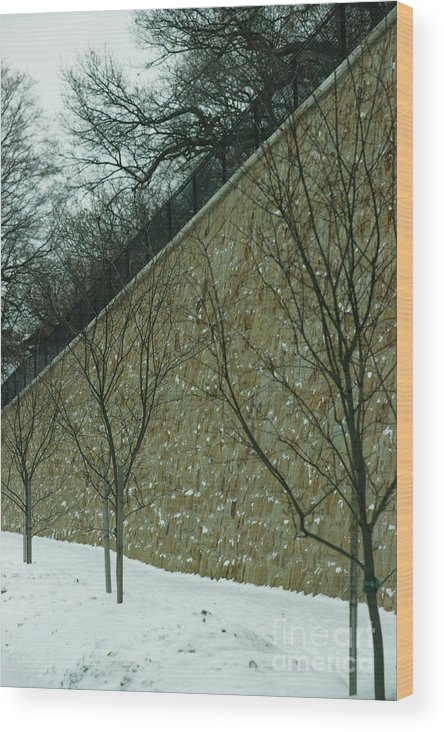 Grand Rapids Wood Print featuring the photograph Your Line Of Direction by Linda Shafer