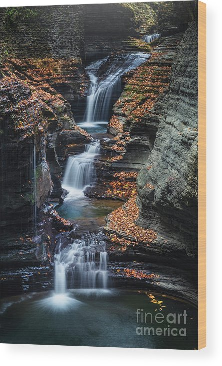 Kremsdorf Wood Print featuring the photograph Every Teardrop Is A Waterfall by Evelina Kremsdorf