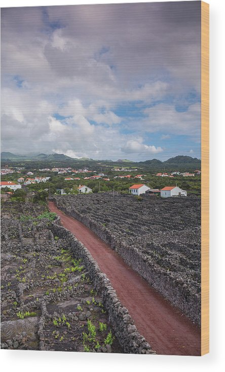 Azores Wood Print featuring the photograph Portugal, Azores, Pico Island, Madalena by Walter Bibikow