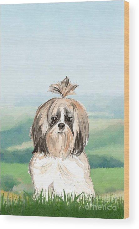 SHIH TZU LOVELY DOG PRINT MOUNTED READY TO FRAME