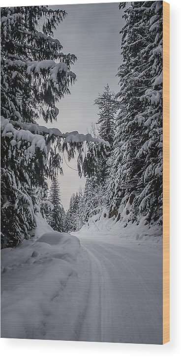 Winter Wood Print featuring the photograph Around The Bend by Albert Seger