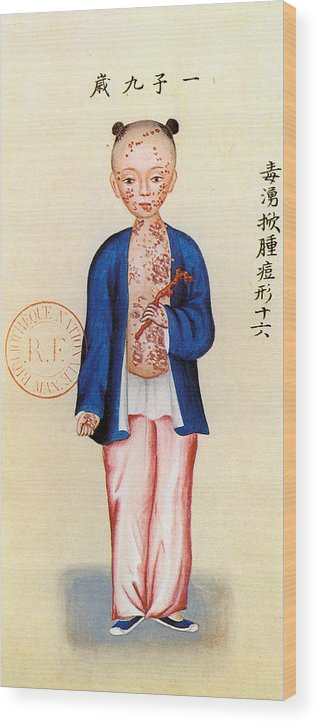 Alternative Wood Print featuring the painting China Smallpox by Granger
