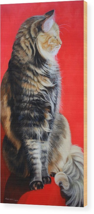 Cat Wood Print featuring the painting Multicolored Cat In Red Background by Susana Falconi