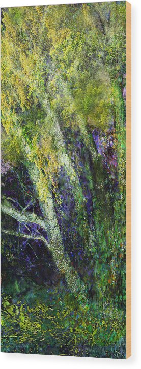 Birches Nature Trees Landscape Wood Print featuring the painting Birches by Anne Weirich
