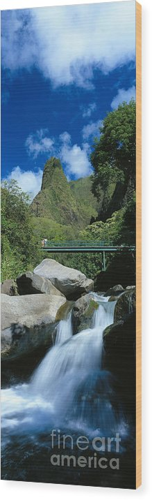 Blue Wood Print featuring the photograph Iao Needle And Creek by Carl Shaneff - Printscapes