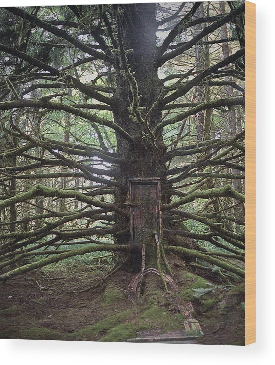 Surreal Wood Print featuring the photograph Elsewhere by Heath Yonaites