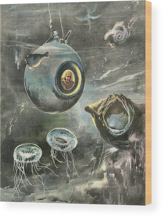 Beebe Wood Print featuring the drawing Professor Beebe In His Bathysphere by Mary Evans Picture Library