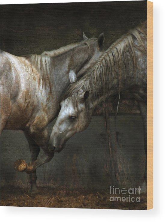 Horse Wood Print featuring the photograph The Flamenco by Angel Ciesniarska