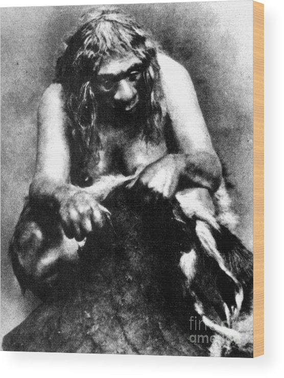 1929 Wood Print featuring the photograph Neanderthal Woman by Granger