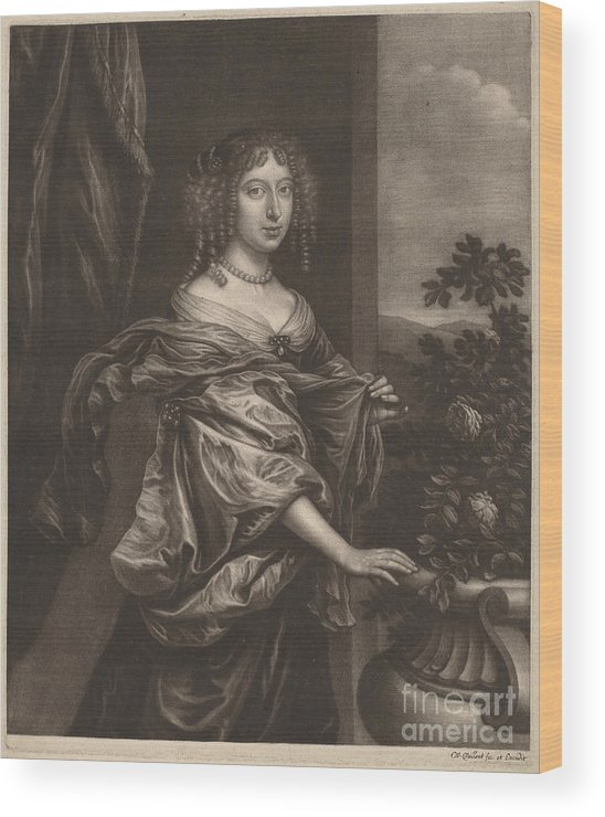 Wood Print featuring the drawing Portrait Of A Lady Beside A Rose Bush by Wallerant Vaillant