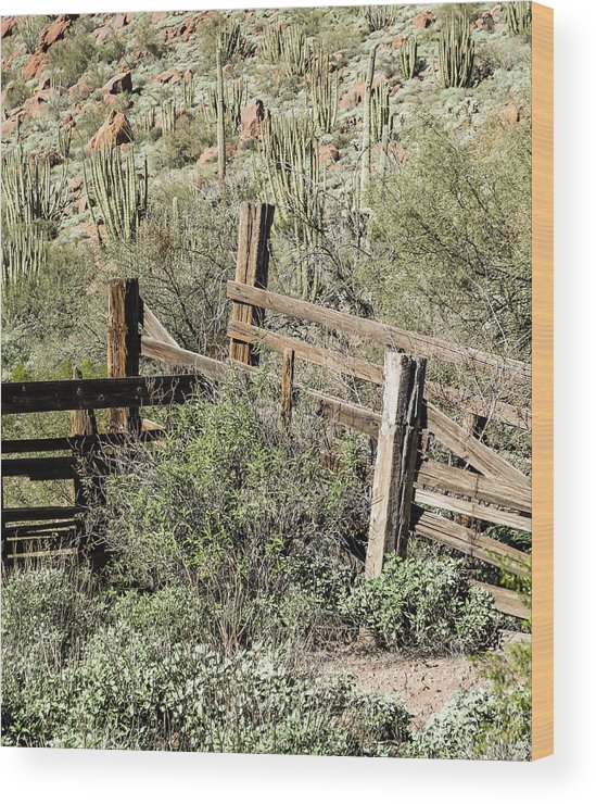 Arizona Wood Print featuring the photograph Secluded Historic Corral In Sonoran Desert by Cary Leppert