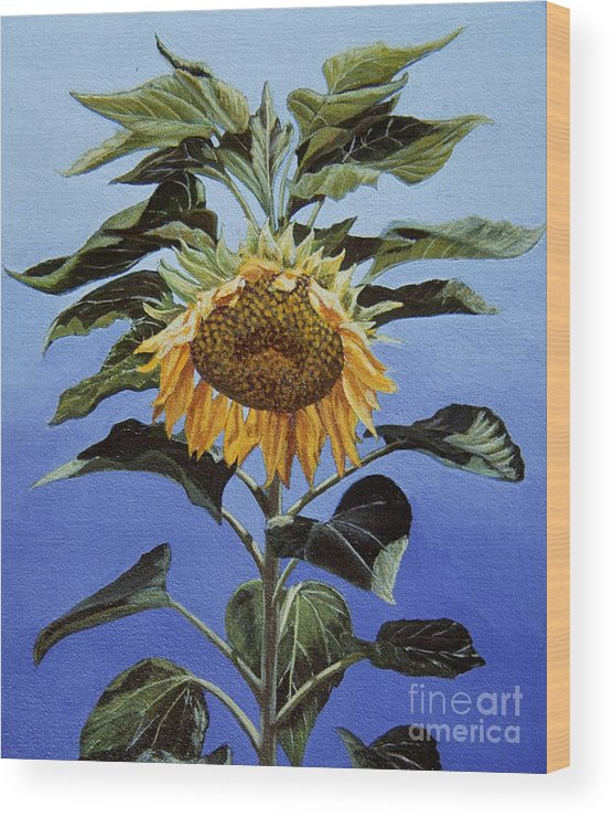 Sunflower Painting Wood Print featuring the painting Sunflower Nodding by Jiji Lee