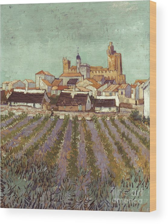 1888 Wood Print featuring the photograph Van Gogh: Saintes-maries by Granger