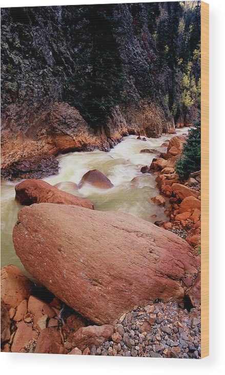 Landscapes Wood Print featuring the photograph Canyon Creek Ouray Colorado by Tom Fant