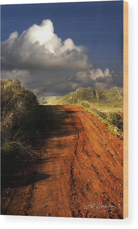 Landscape Wood Print featuring the photograph Noble Road by Richard Gordon
