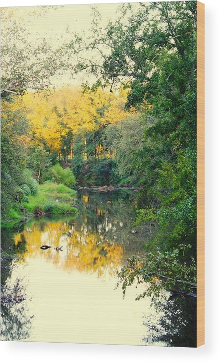 River Wood Print featuring the photograph Chunky River Reflections by Lisa Johnston