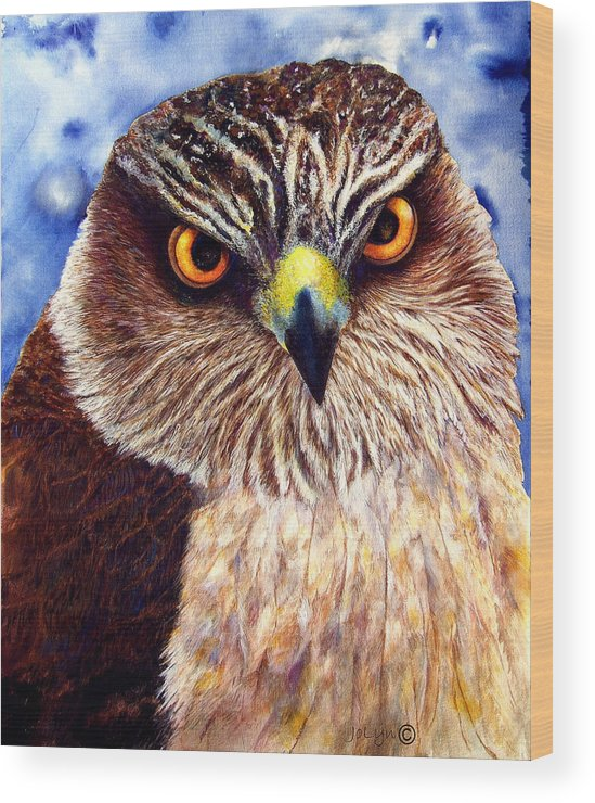 Wild Hawk Wood Print featuring the painting Hawkeyes by JoLyn Holladay