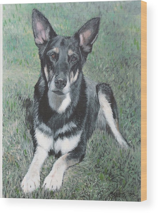 Pet Portrait Wood Print featuring the painting German Shepard by Steve Greco