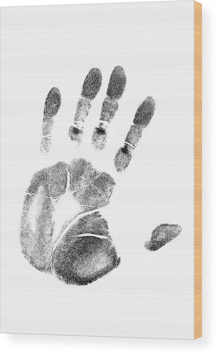 Photography Wood Print featuring the photograph 1980s Left Hand Palm Print On White by Vintage Images
