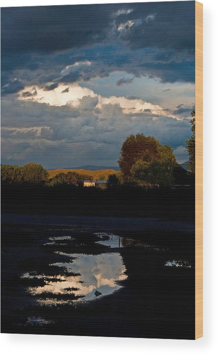 Fine Wood Print featuring the photograph After The Storm by Don Durante Jr