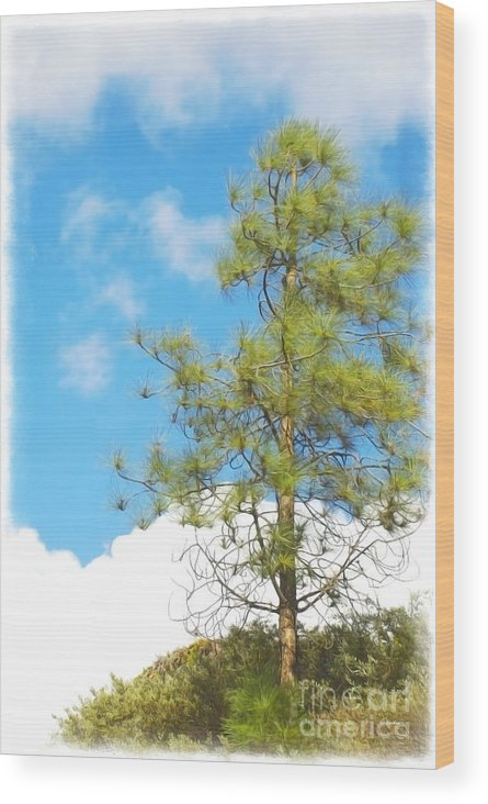 Claudia's Art Dream Wood Print featuring the mixed media It Is A New Day by Claudia Ellis