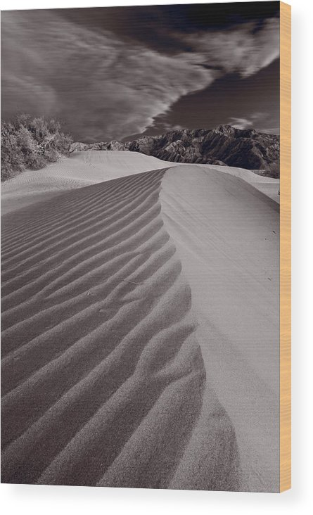 Death Wood Print featuring the photograph Mesquite Dunes Death Valley B W by Steve Gadomski