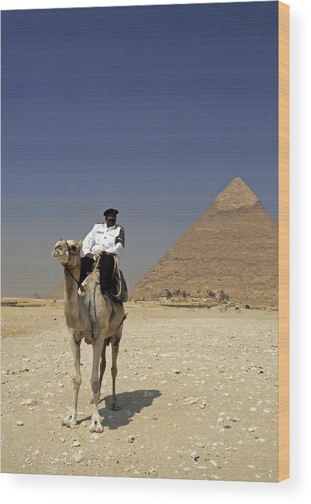 Police Officer Wood Print featuring the photograph Police Officer On A Camel In Front Of Pyramid In Cairo Egypt by Dray Van Beeck