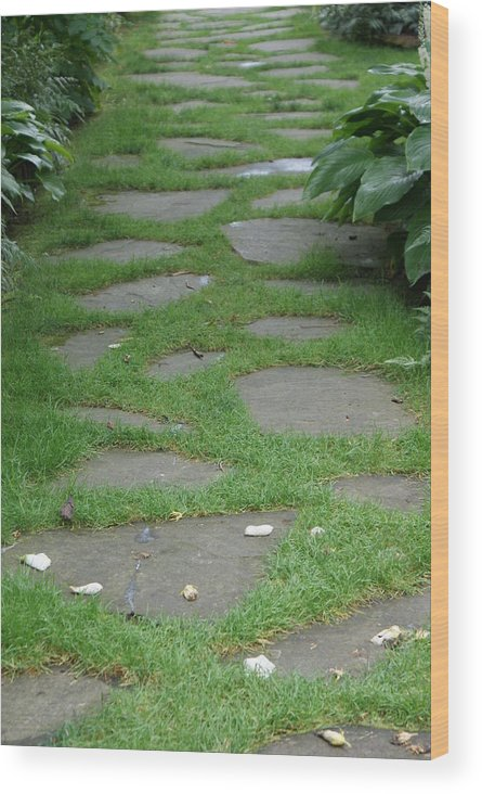 Stepping Stones Wood Print featuring the photograph Stone Garden Walkway by Kristen Mohr