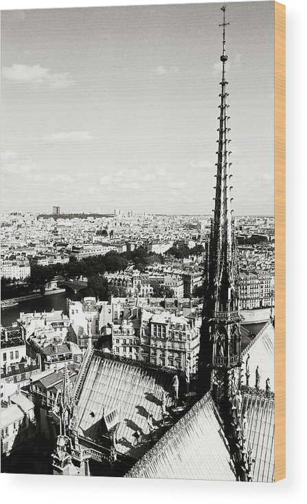 Europe Wood Print featuring the photograph View From Notre Dame by Leonid Rozenberg