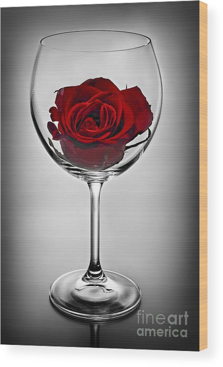 Glass Wood Print featuring the photograph Wine Glass With Rose by Elena Elisseeva
